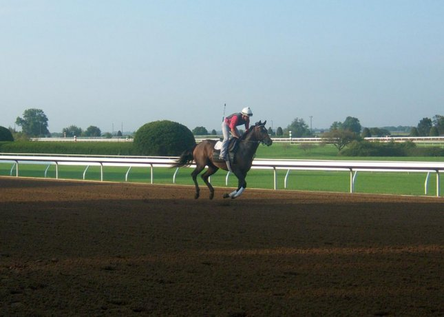 Among the first horses to test Keeneland's new dirt track, installed for the fall race meeting. (Keeneland photo)