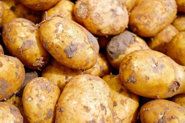 A woman in England offered free potatoes to people in self-isolation due to the COVID -19 outbreak. Photo by Couleur/Pixabay
