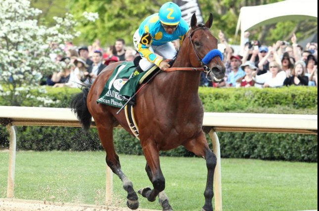 The 2015 Triple Crown winner American Pharoah, seen winning the Arkansas Derby, got his first stakes winner as a sire Saturday as Maven won the Group 3 Prix du Bois at Chantilly in France. Photo courtesy of Oaklawn Park