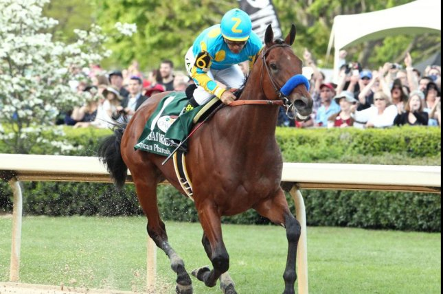 American Pharoah is all alone at the end of the 4/11 Arkansas Derby and moves on to the Kentucky Derby as one of the top favorites. (Oaklawn Park photo)