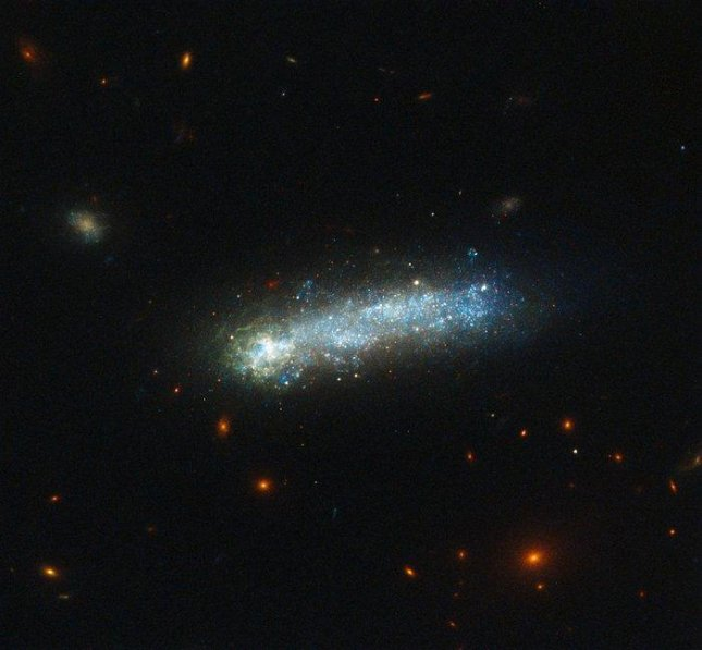In this new image from the NASA/ESA Hubble Space Telescope, a firestorm of star birth is lighting up one end of the diminutive galaxy LEDA 36252, also known as Kiso 5649. The galaxy is a member of a class of galaxies called tadpoles because of their bright heads and elongated tails. This galaxy resides relatively nearby, at a distance of 80 million light-years. Tadpoles are rare in the local Universe but common in the distant Universe, suggesting that many galaxies pass through a phase like this as they evolve. Photo by NASA/ESA