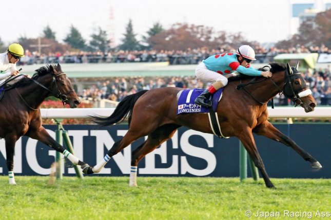 Almond Eye, shown winning the 2018 Japan Cup, is the favorite for Sunday's Grade 1 Tenno Sho (Autumn). Photo courtesy of Japan Racing Association