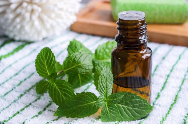 Essential oils have been shown in several studies to be useful antimicrobial agents that promote wound healing, and a new study proposes a way to package them for better use as health treatments. Photo: kazmulka/Shutterstock