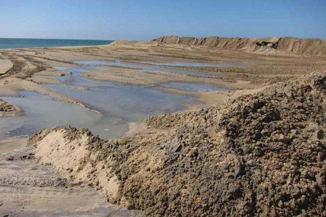Beach replenishment may have long-term ecological consequences