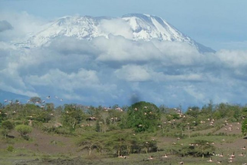 Warming temperatures have caused mountain glaciers to recede in Tanzania's Kilimanjaro National Park. Photo by IUCN / Elena Osipova