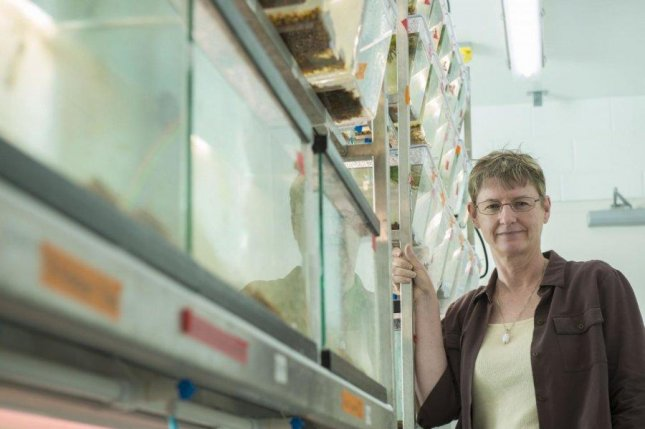 Biologist Kimberly Hughes stands next to several tanks of guppies. Photo by Florida State