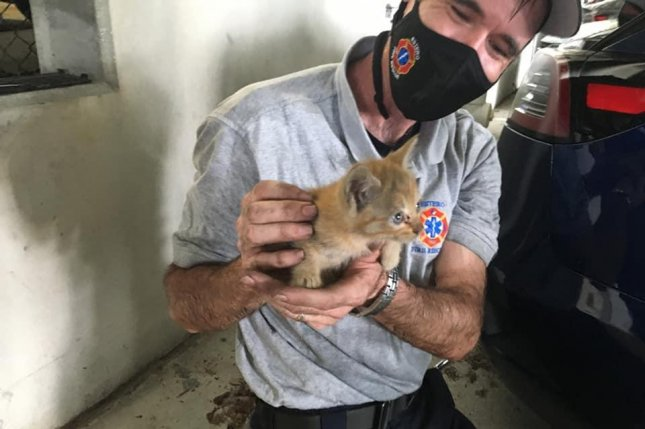 Firefighters in Estero, Fla., responded to Hertz Headquarters to rescue a kitten trapped inside the inner workings of a Tesla parked in the business' garage. Photo by Estero Fire Rescue/Facebook