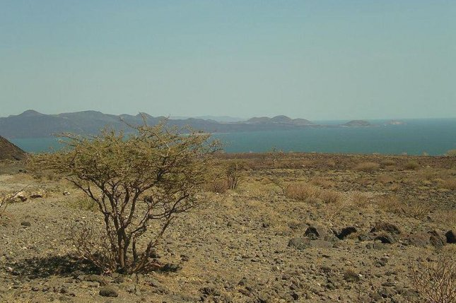 The tools were found near Lake Turkana in northern Kenya. Photo by AdamPG/CC