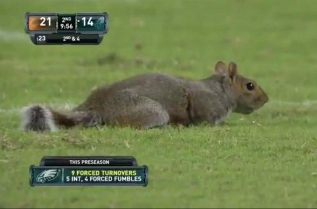 A squirrel gained the praise of Philadelphia Eagle's fans after sprinting onto the field and inspired the team to score 14 unanswered points.  Screen capture/Philadelphia Eagles/Twitter