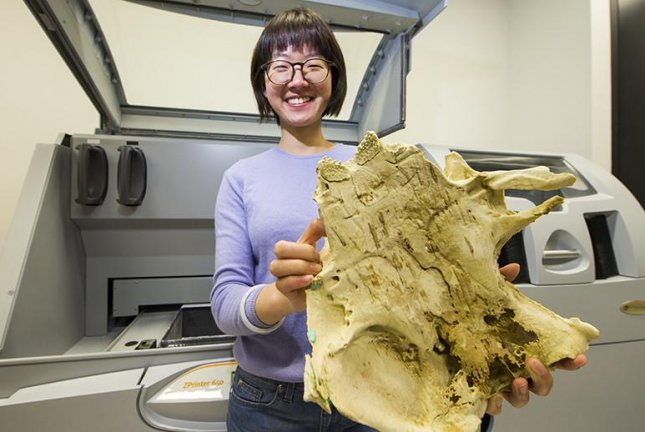 Researcher Yuzhi Hu holds an enlarged, 3D-printed model of the ancient fish fossil. Photo by Stuart Hay/ANU