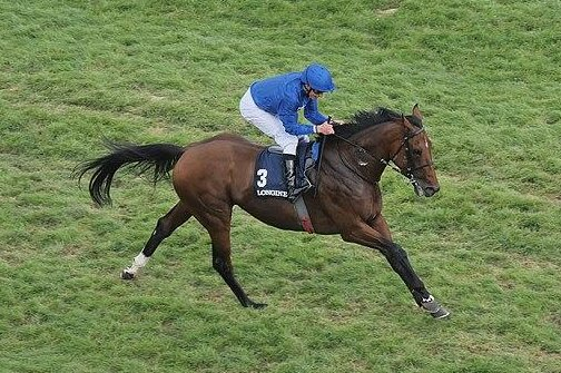 Ghaiyyath, shown, held off Enable to win the Coral Eclipse on Sunday at Sandown. Photo byKassandro / Wikimedia Commons