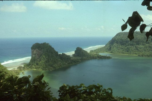 Rat remains reveal 2,000 years of human impact on Pacific island ecosystems