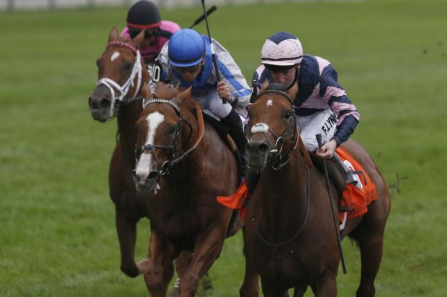 Mondialiste, seen winning last year's Grade I Woodbine Mile, will be among the favorites for Saturday's 34th running of the Grade I Arlington Million. (Woodbine photo)