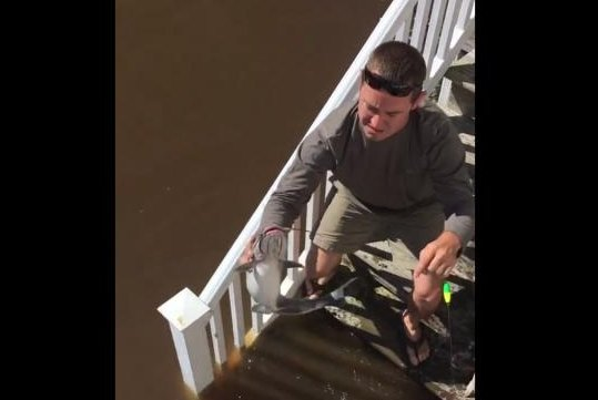 A North Carolina dad catches a catfish from his front porch after Hurricane Matthew flooded his neighborhood. Screenshot: Storyful