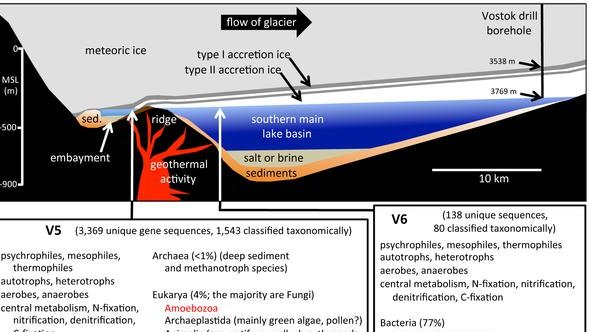 Schematic cross-section of Lake Vostok. (PLoS One)