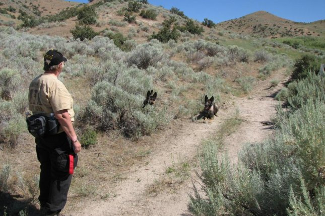 Ann Christiansen and her forensic-trained dogs, which can detect human remains, identify a possible pioneer gravesite in Idaho along a branch of the Oregon Trail. Photo courtesy of Jerry Eichhorst