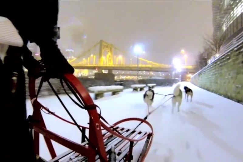 Matt Philips mushes his three-dog team in downtown Pittsburgh. Storyful video screenshot