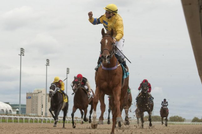 Pink Lloyd, seen winning the 2017 Overskate Stakes, goes for his 11th straight stakes win this weekend at Woodbine. Photo courtesy of Ontario Jockey Club