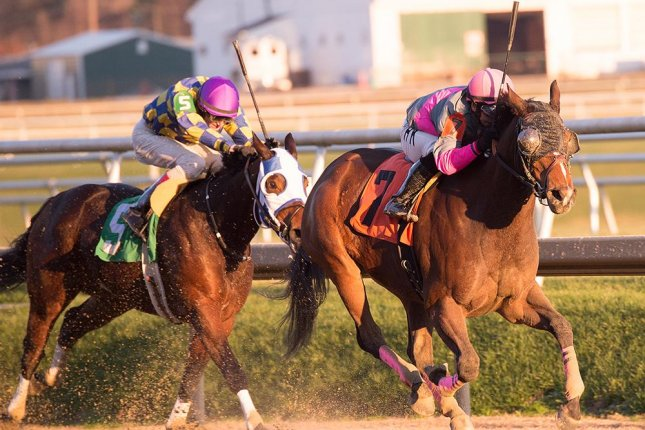 Lady Sabelia wins Saturday's (12/5) Willa on the Move Stakes at Laurel Park. (Laurel Park photo)