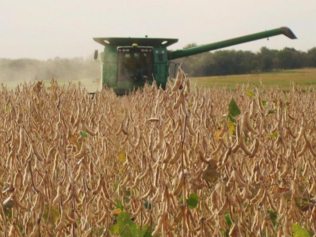 Due to the escalating trade war with China, much of this year's record-breaking American soy harvest is expected to remain unsold. Photo courtesy of Mark Jackson