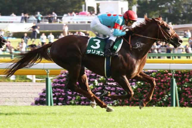 Salios, seen winning the Grade 3 Saudi Arabia Royal Cup earlier this season, is a likely favorite for Sunday's Group 1 Asahi Hai Futurity at Hanshin. Photo courtesy of Japan Racing Association