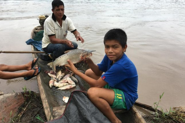 A boy holds a freshly caught boquichico, a commonly eaten freshwater fish species, along the banks of Peru'sUcayali River. Photo by Sebastian Heilpern