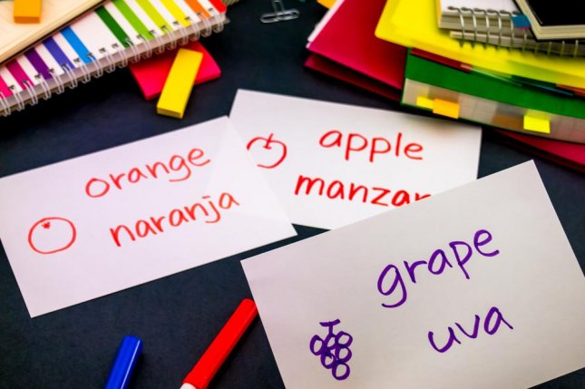 Just a week spent learning a new language can have measurable cognitive benefits. Photo by Eiko Tsuchiya/Shutterstock