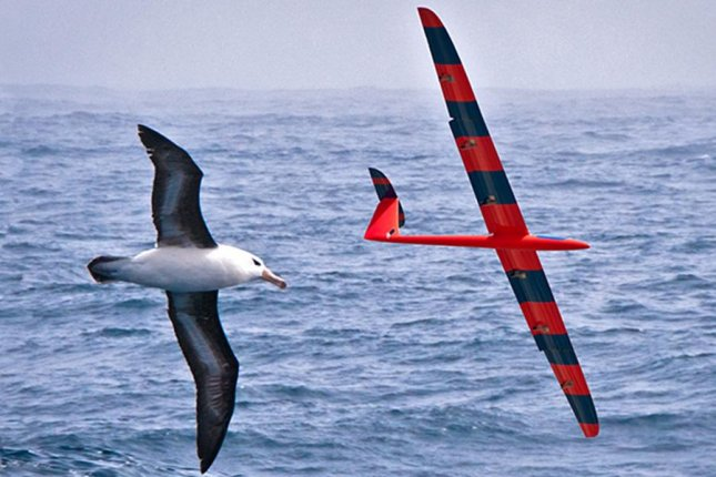 Scientists used reinforcement learning to teach gliders to navigate atmospheric thermals like birds. Photo by Phil Richardson/Woods Hole Oceanographic Institution