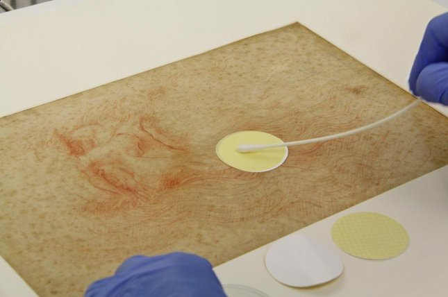 Researchers sampled and sequenced microbes from seven of Leonardo da Vinci's drawings, including Portrait of a Man in Red Chalk. Photo byGuadalupe Piñar, et al./Frontiers in Microbiology