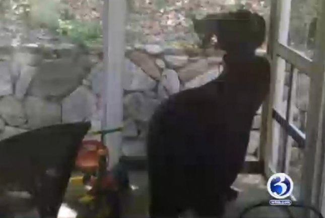 A mother bear and her cubs get into trouble on a Connecticut woman's screened porch. Screenshot: WFSB-TV