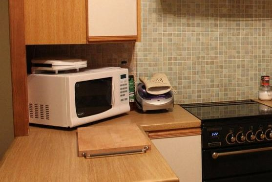 Firefighters in Britain said a kitchen fire was caused by the homeowner's dog starting the microwave. Photo by PublicDomainPictures/Pixabay.com