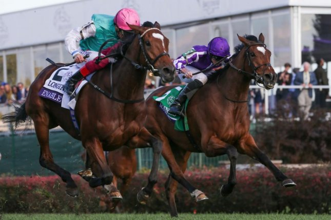 Enable, shown winning the 2018 Breeders' Cup Turf, is odds-on to win her third straight Prix de l'Arc de Triomphe on Sunday at Longchamp in Paris. Photo courtesy of Breeders' Cup