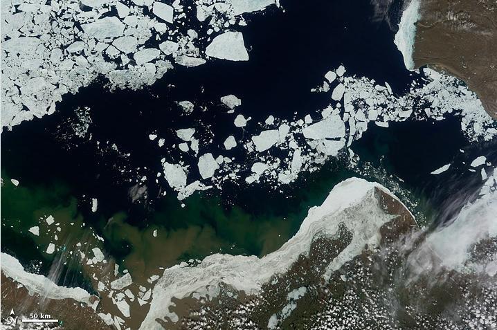 Sea ice in the Beaufort Sea on June 16. Credit: NASA