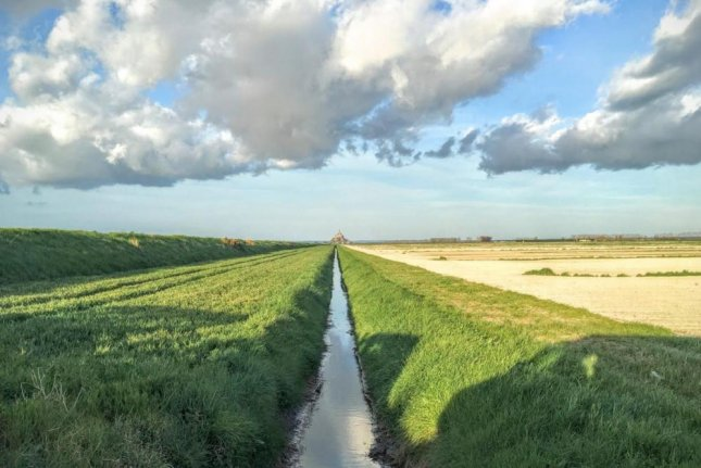 Researchers surveyed the health of streams in a region of France that's hosted intense agricultural activity for nearly a millennium. Photo by Ben Abbott