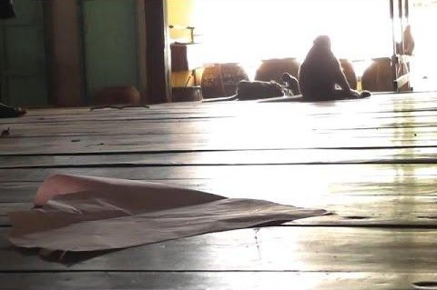 About 100 monkeys living in the bushes outside of a temple in Thailand entered a polling place inside the facility and destroyed several pages of documents, including voter lists. Screenshot: TNN24/YouTube