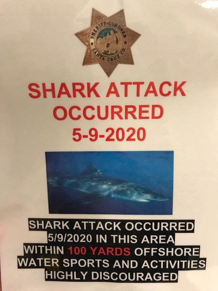 A 26-year-old man died in a shark attack while surfing at a beach in northern California on Saturday, officials said. Photo courtesy Santa Cruz County Sheriff's Office