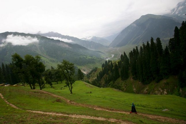 A Kashmiri nomad girl walks through a forest near the high altitude Vishansar lake valley near Srinagar, Indian Kashmir. Nearby in Pakistan's Khyber Pakhtunkhwa province, a goal to plant 1 billion trees to reverse deforestation effects was met this month -- nearly five months ahead of schedule. File Photo by Altaf Qadri/EPA