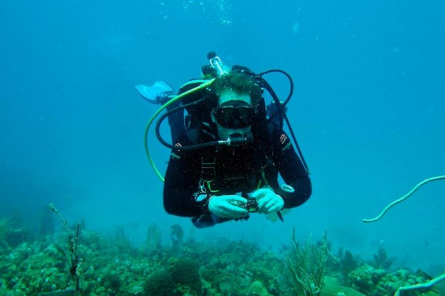 Researcher Max Kaplan takes photos of a coral reef while diving in the Virgin Islands. Photo by T. Aran Mooney/Woods Hole Oceanographic Institution