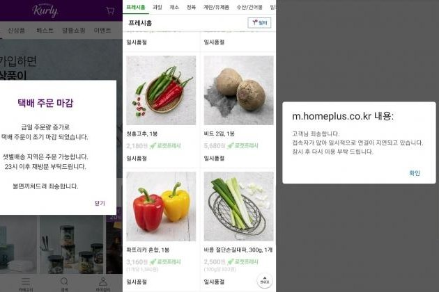 Websites of South Korean retailers struggle to meet the rising demand for daily necessities as shoppers stuck at home purchase more goods online. Screenshot via UPI News Korea