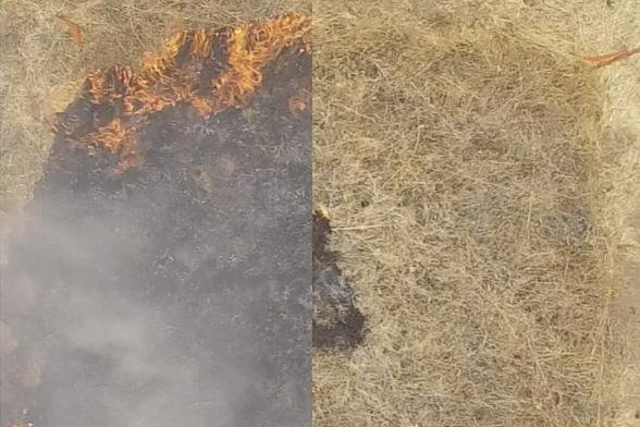 The plot on the right was coated with a new flame retardant, preventing the spread of fire. The untreated plot of grass on the left was quickly engulfed by the flames. Photo by Eric Appel/Stanford