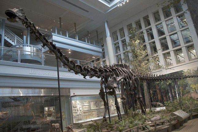 Sold! Diplodocus skeleton auctioned in Britain for $652,000