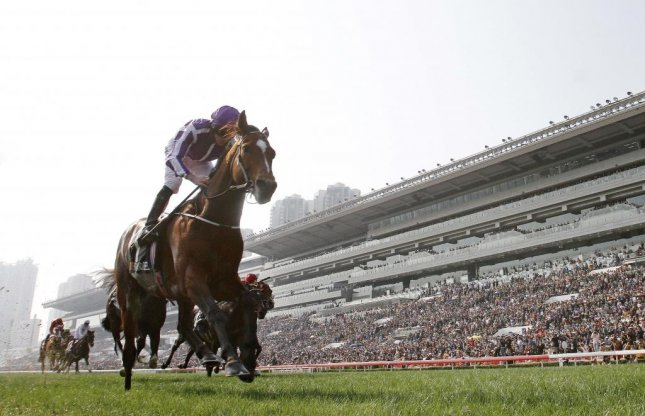 One final look at globetrotting superstar Highland Reel, who heads off to the breeding shed in Ireland after this victory Dec. 10 in the Longines Hong Kong Vase at Sha Tin. (HKJC Photo)