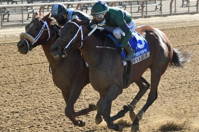 She's a Julie pulls off the upset in Saturday's Grade I Ogden Phipps at Belmont Park. Photo by Chelsea Durand, courtesy of Belmont Park