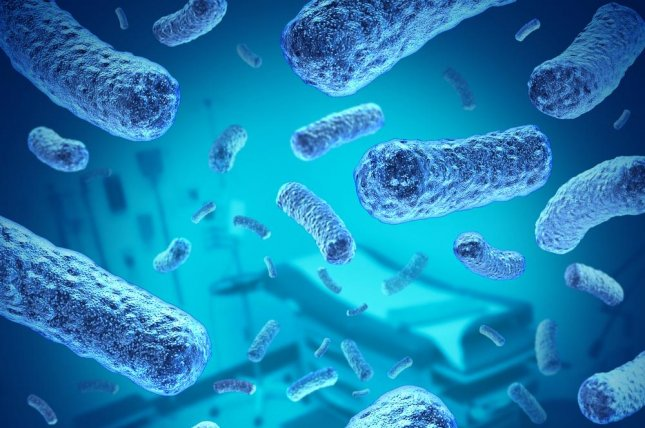 The Elizabethkingia bacteria rarely infects humans, however a recent outbreak has disease investigators unsure how people have come into contact with it. Photo by Lightspring/Shutterstock