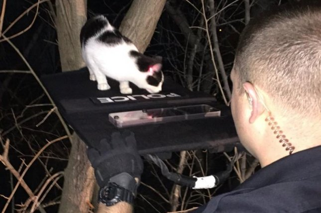 Officer TJ Markowsky of the La Vista Police Department helps a cat cross a bulletproof shield bridge while another officer uses the red laser sight from a Taser to guide the feline. Photo by @ofctmarkowsky/Twitter