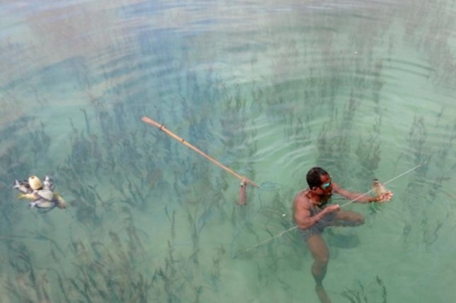 Spearfishing among marine marshes remains common among indigenous groups in Southeast Asia. Photo by Richard Unsworth/Stockholm University