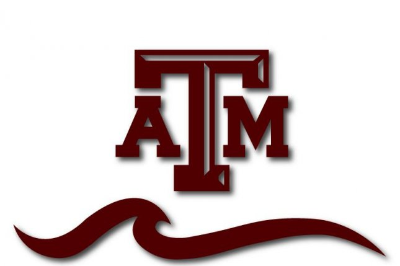 Texas A&M professor fails entire class for bad behavior