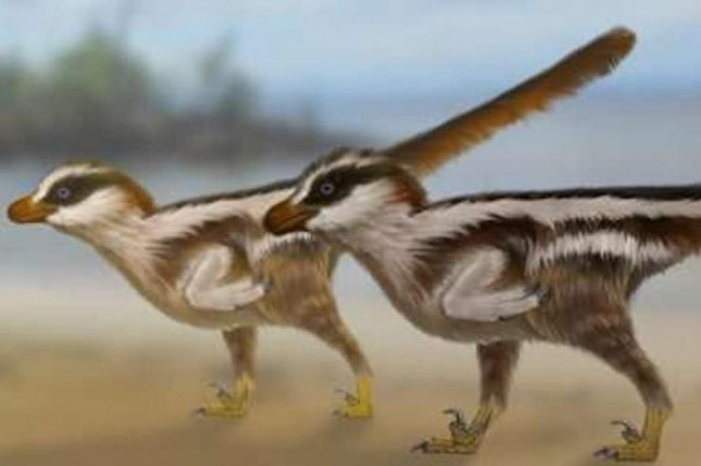 Scientists think tiny footprints found in South Korea were made by a sparrow-size raptor. Photo by University of Queensland