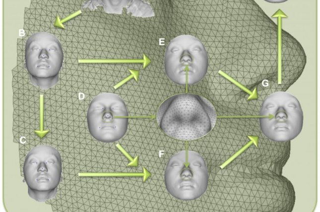 Scientists have discovered new genes that control the formation of facial structures. Photo by Peter Claes, et al./PLOS One