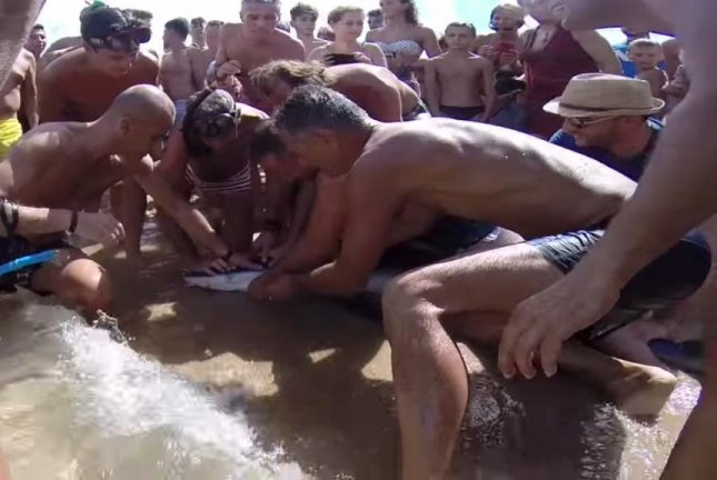 Beachgoers in Porto Pollo, Italy, hold a blue shark down while others work to carefully extract a large fishing hook from its mouth. ombracorta/YouTube video screenshot